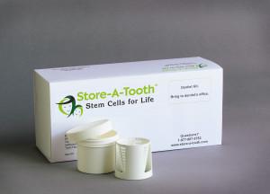 dentalstemcells